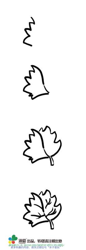 简笔画--画片代表秋天的红色枫叶